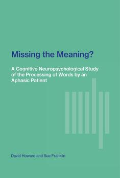 Cover of: Missing the Meaning? | David Howard, Sue Franklin